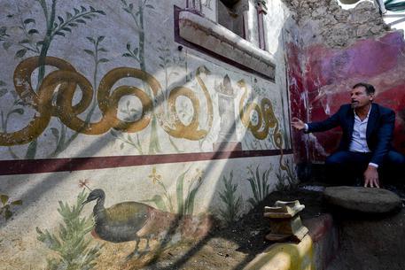 Il direttore generale del Parco archeologico di Pompei, Massimo Osanna mostra gli affreschi del Giardino Incantato riemerso durante i lavori di scavo a ridosso di Porta Vesuvio ANSA / CIRO FUSCO © ANSA