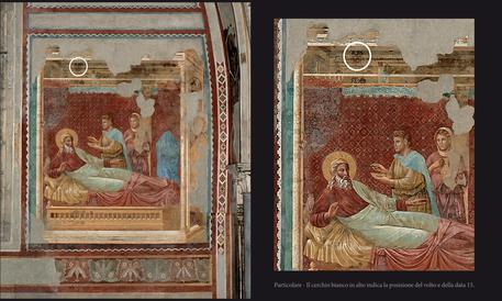 dossier Giotto Assisi - foto dello studioso Luciano Buso © ANSA