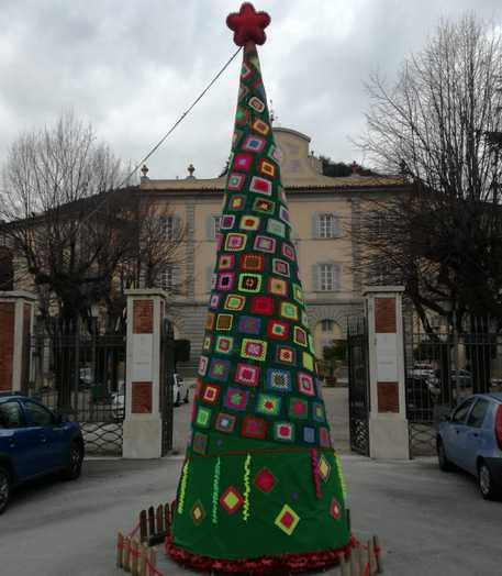 Natale Nel Pisano Albero Alluncinetto Cronaca Ansait