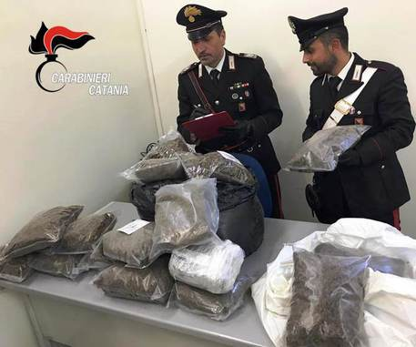 Catania, sequestrati 60 kg di marijuana $