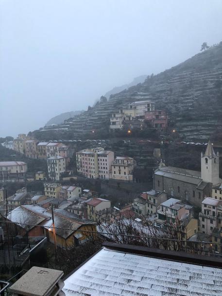 Neve su terrazzamenti delle Cinque Terre - Liguria - ANSA.it
