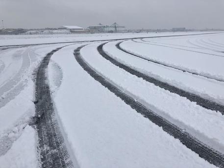 Napoli, la neve fa saltare l'allenamento, azzurri di nuovo in campo mercoledì