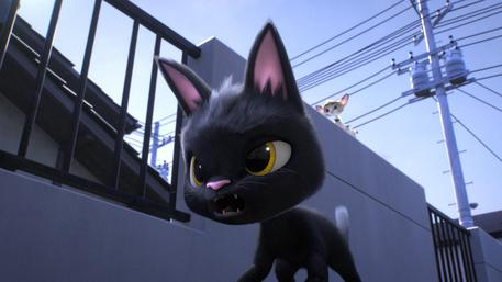 Il gattino rudolf cerca la felicità cinema ansa.it