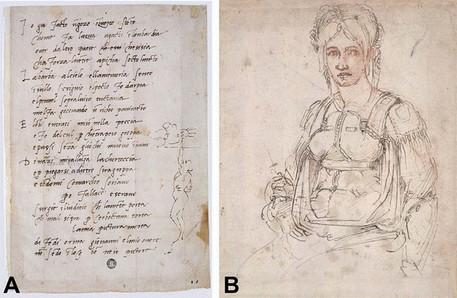 La caricatura di Michelangelo nascosta nel ritratto di Vittoria Colonna (fonte: Clinical Anatomy) © Ansa