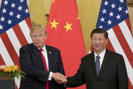 Cina, 'subito contromisure a dazi Usa'