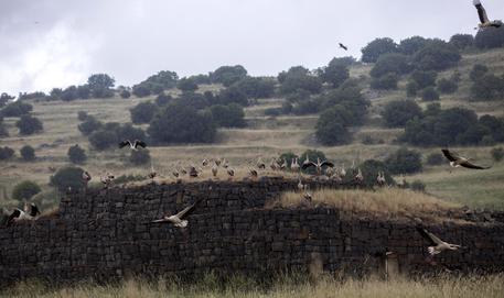 Missili iraniani sul Golan dalla Siria, Israele risponde con raid