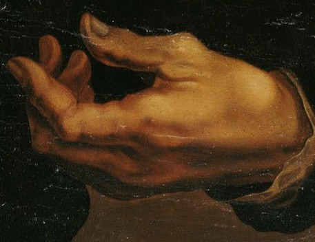 Depiction of Michelangelo's left hand (source: Clinical Anatomy) (foto: Ansa)