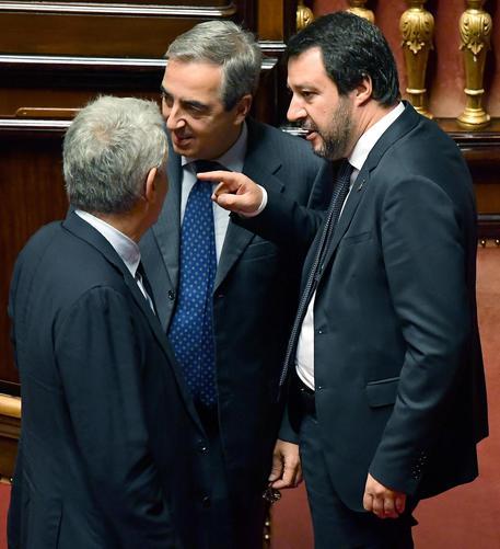 Matteo Salvini riferisce in Senato © ANSA