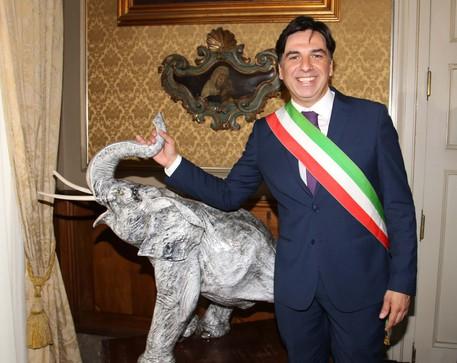 Europee, Pogliese lascia Forza Italia$