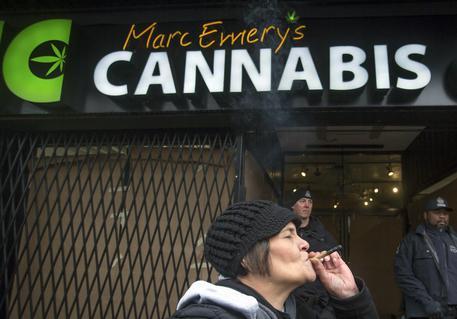 New York verso la legalizzazione della marijuana ricreativa