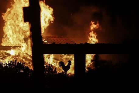 Grecia, almeno 54 morti per gli incendi e oltre 100 feriti