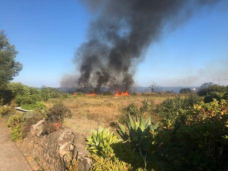 Diffusi incendi in Sicilia, in azione vigili del fuoco$