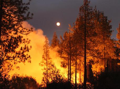 Incendio devasta la California del nord. Morti due pompieri. Il video