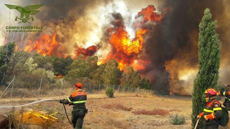Incendi: prime sanzioni a privati
