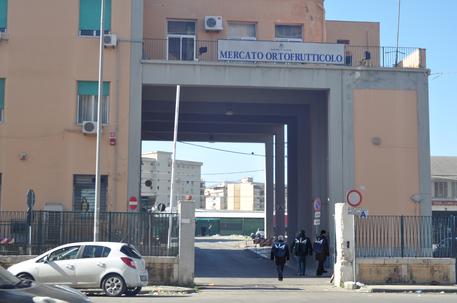 La mafia dell'ortofrutta: Dia sequestra beni per 150 milioni$
