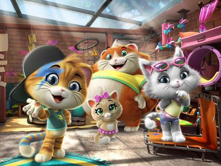 Rainbow lancia cartone animato 44 gatti marche ansa.it
