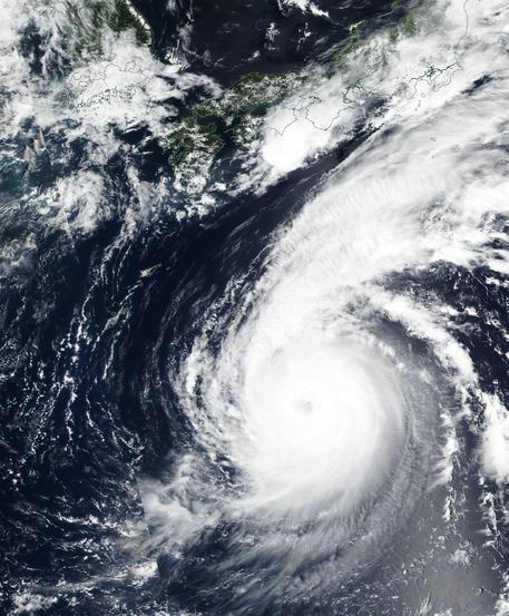 Giappone, 7 morti per il tifone Jebi