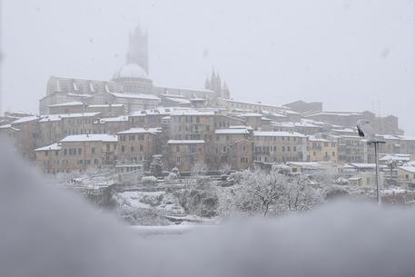 Maltempo: neve a Siena dalle prime ore dell'alba © ANSA