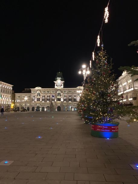 Trieste Natale Immagini.Natale Abeti A Trieste Fino Al Capodanno Ortodosso Friuli V G
