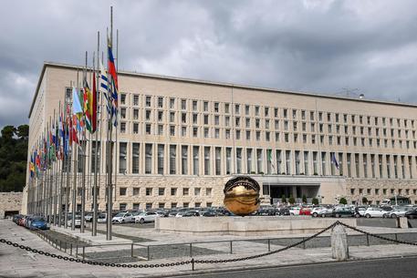 Napoletano dell'Onu trovato morto con ferite al collo: