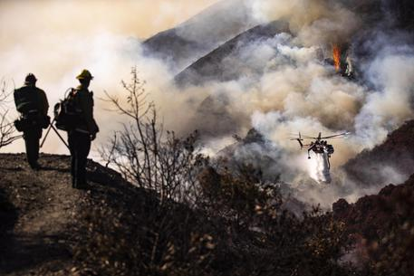 Usa, incendi devastanti in California: in fuga Schwarzenegger e LeBron James