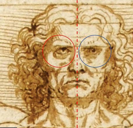 Uomo Vitruviano di Leonardo: la scoperta: