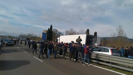 Protesta pastori sardi, bloccata Ss 131