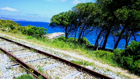 Pivetti, no a stop treno Palau Marina