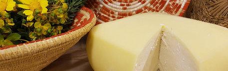 """""""Cagliari, say cheese"""" in ricettario"""