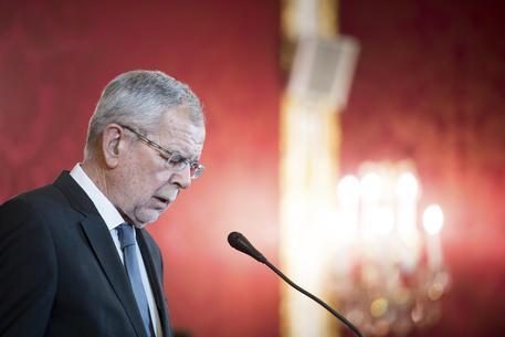 Presidente Austria,'elezioni anticipate'