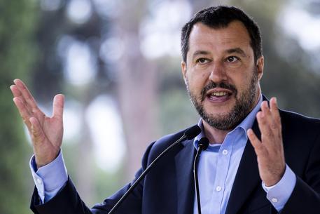 """Salvini lancia nuova proposta di legge :""""I maltrattamenti sugli animali da oggi saranno puniti"""""""