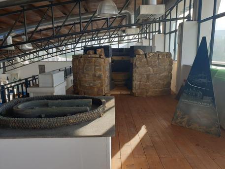 A Olbia prima expo archeologia sarda