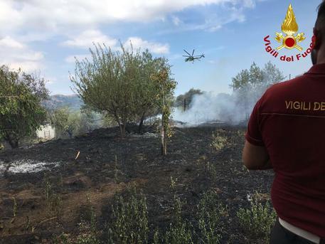 Catania, bruciati oltre 20 ettari di campagne$