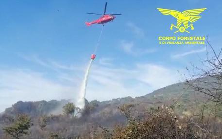 Sardegna: 6 roghi spenti con mezzi aerei