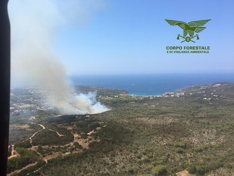 Incendi: 3 arresti in Sardegna