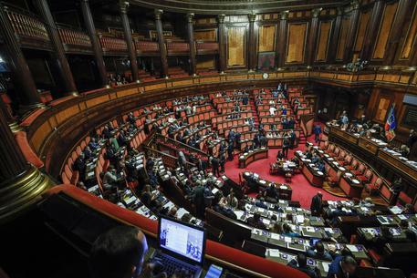 L'Aula del Senato © ANSA