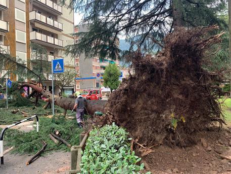 Maltempo, nubifragio a Bolzano: grandine e raffiche di vento