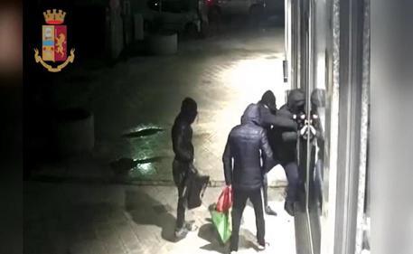 Sgominata gang specializzata nella spaccata delle vetrine$