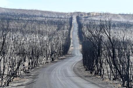 Australia © EPA