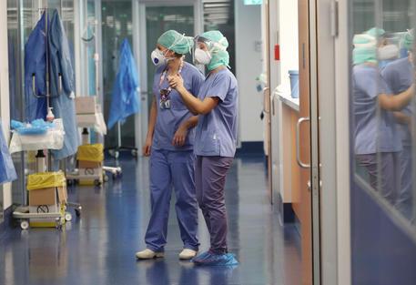 Coronavirus. Giornata nera nelle Marche: 9 decessi