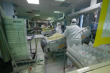 Covid: Veneto, 1.567 nuovi casi e 29 morti da ieri - Veneto