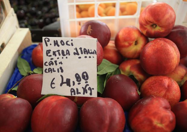 Frutta e verdura mercato di speculatori news for Mercato frutta e verdura milano