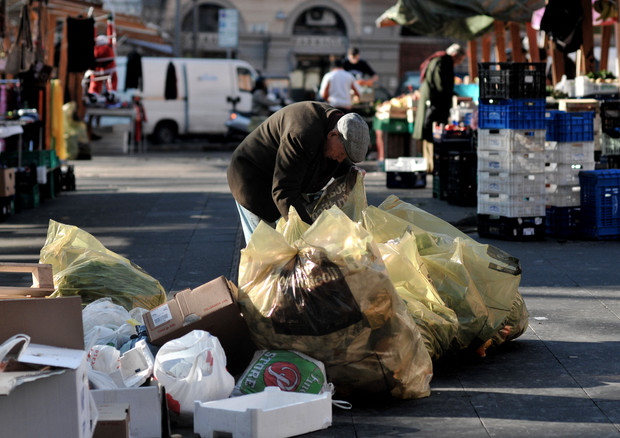 Un anziano fruga tra i  rifiuti del mercato a Roma (ANSA)