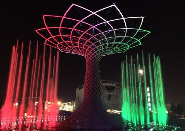 Expo 2015 tutti i numeri di milano 2015 news for Tutti i padiglioni expo 2015