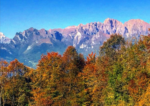 Foliage in the Dolomites bursts with fall colour © Ansa