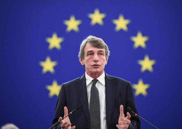 Sassoli, l'Italia recepisca la direttiva copyright (foto: )