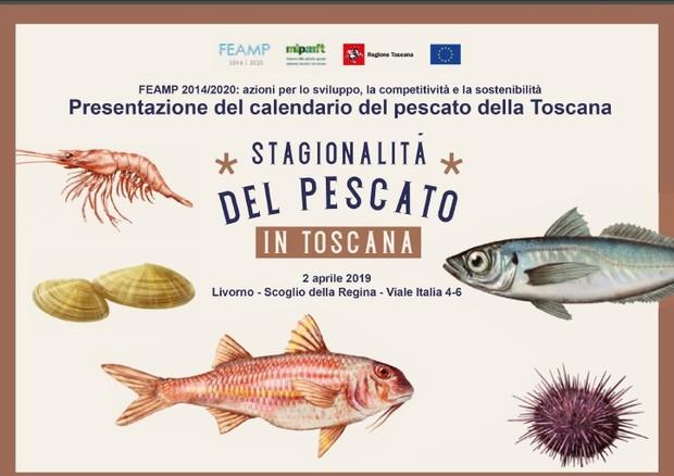 Fin Sicilia Calendario.Fondi Ue Presentazione Del Calendario Del Pescato Toscano
