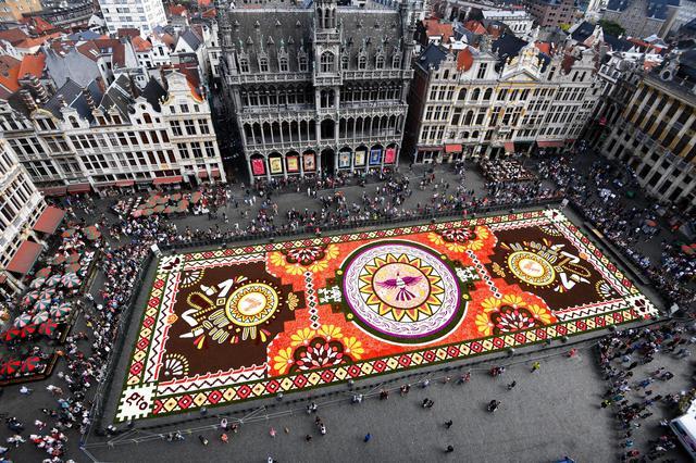 Tappeto Floreale Bruxelles : Bruxelles flower carpet il tappeto di fiori sulla grand date