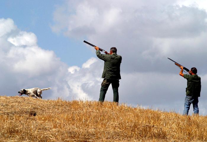 Incidente caccia, 81enne ferito a occhio