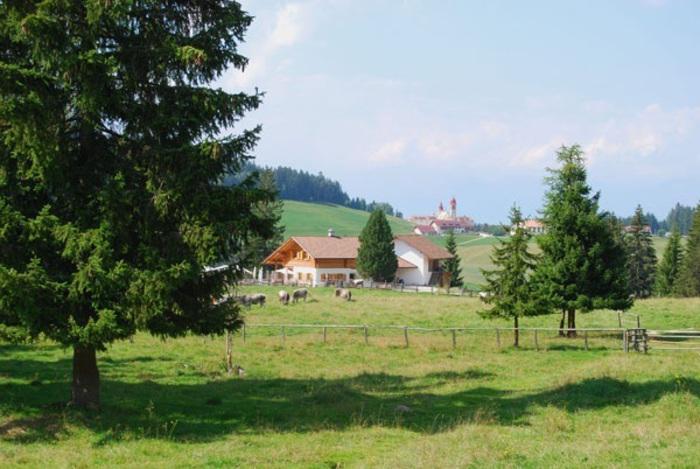 Turismo, estate record in Alto Adige